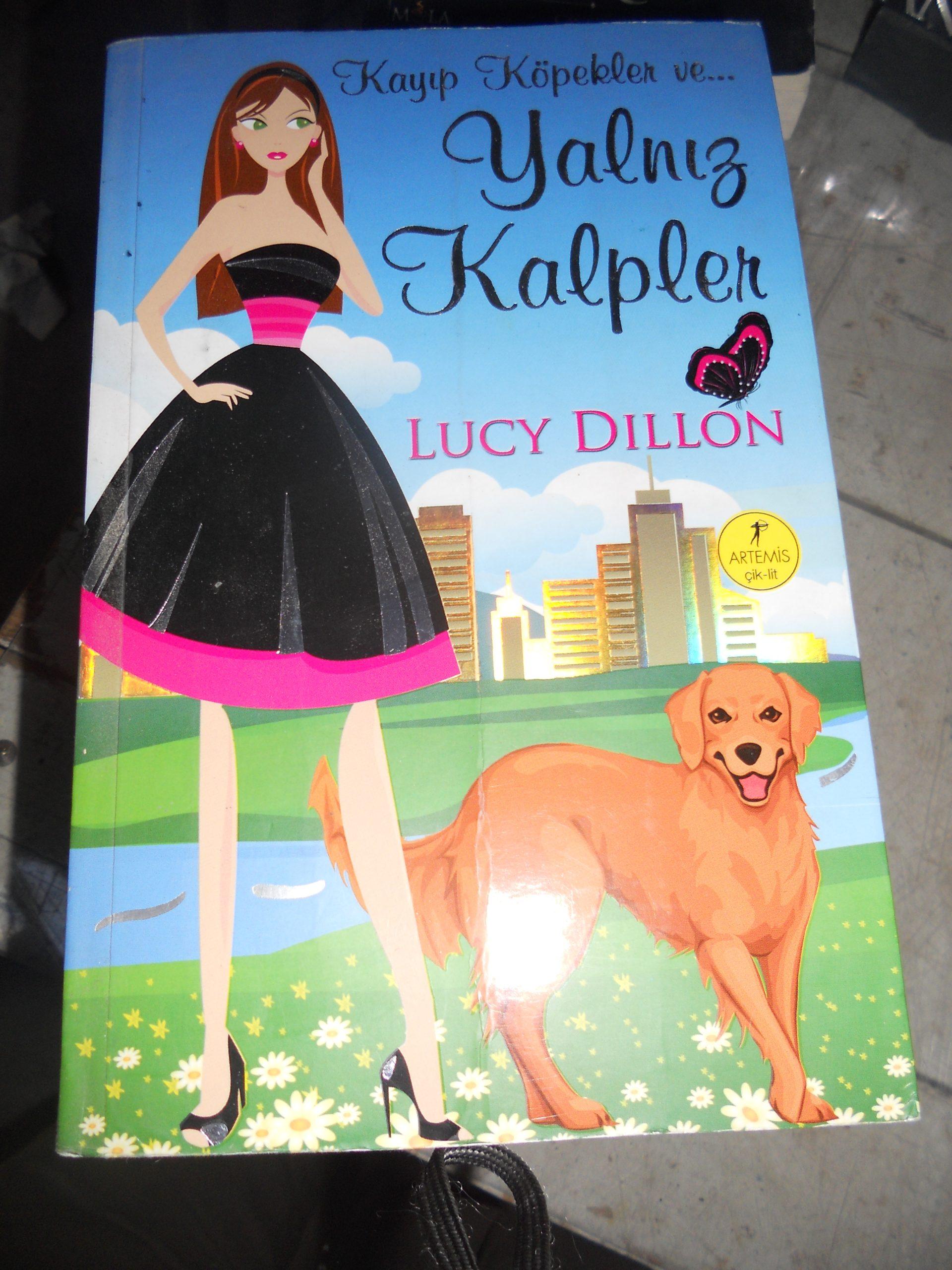 Kayıp Köpekler ve YALNIZ KALPLER/Lucy DILLON/ 10 TL